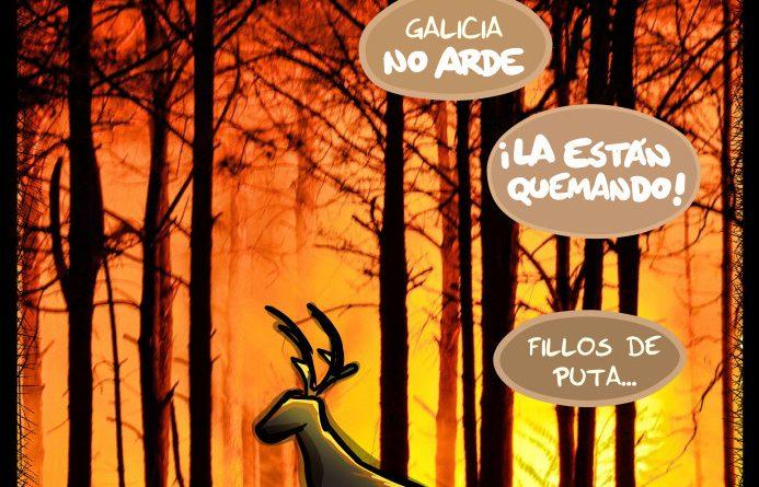 Galicia no arde: NOS LA ESTÄN QUEMANDO!!!